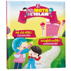 Petits mots de l'islam (2) Mâ châ Allâh ! Astaghfiroullâh !