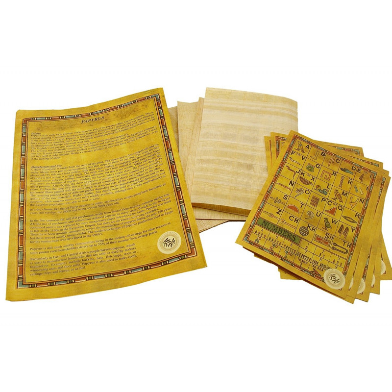 Pack feuille papyrus